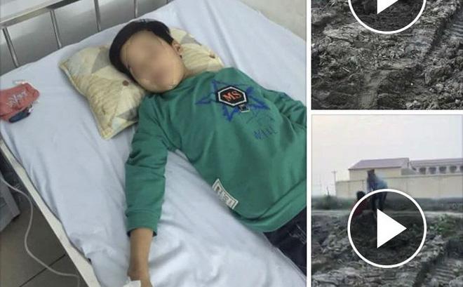 thực hư bé trộm ngô bị đánh tới chấn thương sọ não